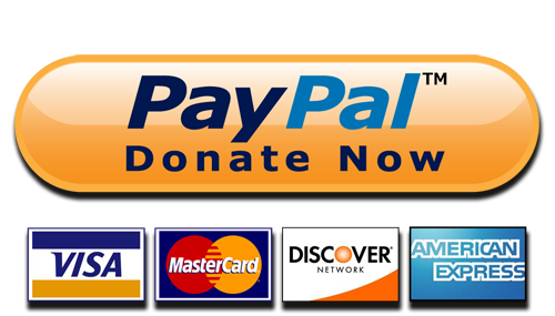 PayPal Donate Button Transparent